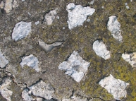 Stones in Concrete with Crack Texture